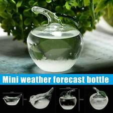 Weather Forecast Glass Crystal Bird Shape Storm Bottle Decor F2O3