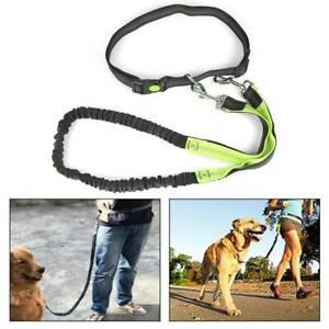 Jogging Hundeleine Jogginggurt Leine mit Bauchgurt Elastisch Für Joggen mit Hund