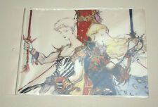 Final Fantasy V 5 Yoshitaka Amano Illustration Clear File Folder Bartz Faris