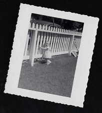 Antique Vintage Photograph Adorable Baby Girl Standing By White Picket Fence