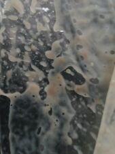 Microworm Starter Culture (live food for aquarium fish)