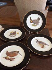 Arthur Singer Bird Plates Woodmere China Woodcock Chuhar Partridge Bobwhite +