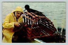 Postcard Vintage Famous Maritime Fisherman Prize Lobster Pot Maine  Coast