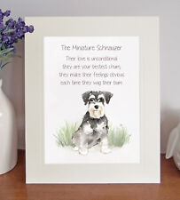 Miniature Schnauzer BESTEST CHUM Novelty Dog Poem 8 x 10 Picture/10x8 Print Gift