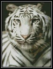 White Tiger 3 - Cross Stitch Chart/Pattern/Design/XStitch