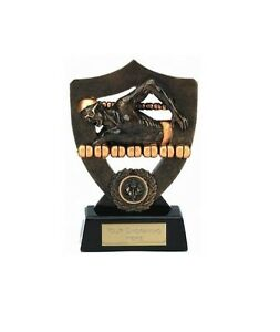 """7"""" Male Swimming Award (RRP £6.49) engraved and postage free"""