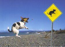 Ansichtskarte: Vorsicht Hund! - beware of the Dog!