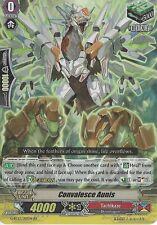 Cardfight Vanguard Card: Convalesce Aunis - G-Bt13/019En Rr