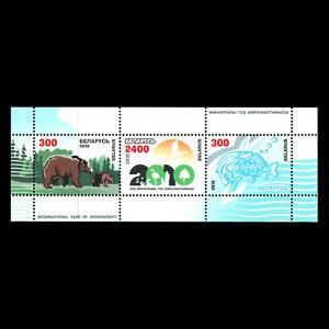 Belarus 2010 - International Year of Biodiversity - Sc 725 MNH