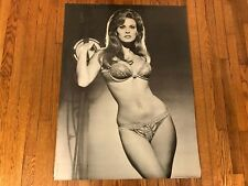 Vintage 1970 Sex Symbol Raquel Welch Poster Personality Posters # 654