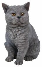 Cat Short Haired Grey - Lifelike Garden Ornament - Indoor or Outdoor  Real Life