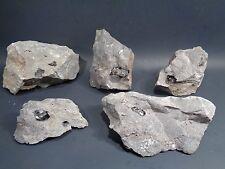 Authentic NY Herkimer Diamonds QuartzCrystals On Dolomite Matrix Specimens Lot