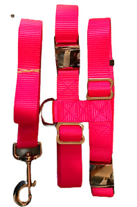 Pig Harness Heavy Duty Metal Buckle With Leash All sizes Carter Pet Supply