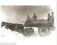 Vintage Horse Drawn Wagon  Standard Oil Polarine Gasoline Dog Sitting On Tank