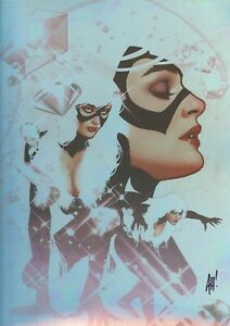 Adam Hughes SIGNED 2019 SDCC Debut Spiderman Comic Art Print Holofoil Black Cat