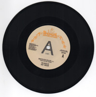 VOICES OF EAST HARLEM Wanted Dead Or Alive / Can You Feel...New 70s Soul DEMO 45