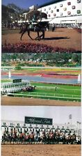 HOLLYWOOD PARK'S LAST WEEKEND,LOT OF 3 PC,INFIELD, STARTING GATE,WALKING RING