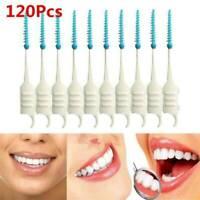 120 Pcs/set Dual Toothpick Oral Interdental Cleaner Teeth Floss Dental Gum Brush