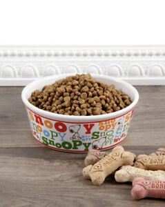 Peanuts Classice Colorful Snoopy's Pet Dog Food Water Bowl Stoneware