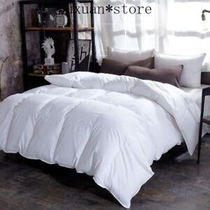 100% Goose Down Duvet Quilt Full Size Comforter Winter Thick Blanket Solid Color