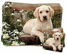 Yellow Labrador Puppy Twin 2x Placemats+2x Coasters Set in Gift Box, AD-L71PC