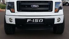 2009-2014  Ford F-150 F150 black with white mesh Lower Bumper Grille ecoboost