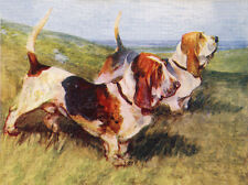 BASSET HOUND CHARMING DOG GREETINGS NOTE CARD TWO DOGS IN RURAL SETTING