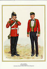 FIFER & OFFICER.  THE GREEN HOWARDS..MILITARY PRINT
