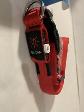 USB Rechargeable LED Dog Collar Red Size Large