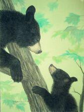 Original Pastel Drawing Mama & Baby Black Bear in Tree Sally Porter Wildlife Art