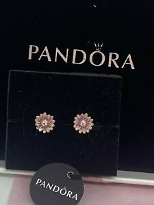 new Authentic Pandora 14k Rose Gold # 288773C01 Pink Daisy Flower Stud Earrings