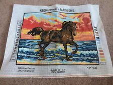 Needlpoint Tapistry Complete Ready to Frame etc Horse on the Beach 11.75 x 8.75