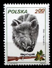 Wildschwein. Jagdwesen. 1W. Polen 1981