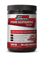 Natural L-Glutamine - Pure Glutamine Powder 5000mg - Sports Muscle Booster 1B