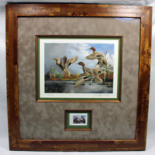 2006 Texas Waterfowl Duck Conservation Stamp Print Framed New Mint S/N