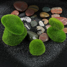 5pcs Landscape Artificial Bryophyte Dry Green Moss Stone Fake Rock Plants Decora