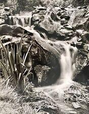AMAZING ORIGINAL WATERFALL LANDSCAPE ART PHOTOGRAPH BY PHOTOGRAPHER CLOIRTON LEE