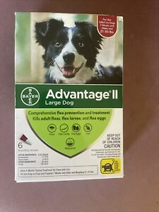 Advantage II 6-dose Large Dog Topical Flea Treatment,prevention - for 21-55 lbs