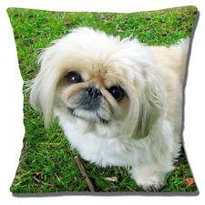 Cute Pekingese Puppy Dog Cushion Cover 16x16 inch 40cm Cream Dog Outdoors