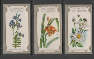 CIGARETTE CARDS Lea 1913 Flowers to Grow - (3 cards) 12,24,40