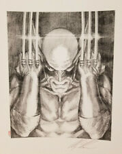 Alex Ross Signed Giclee of Sketch-Wolverine Visions