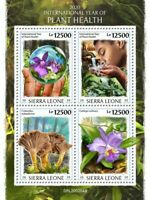 Sierra Leone Plants Stamps 2020 MNH Year Plant Health Flowers Mushrooms 4v M/S