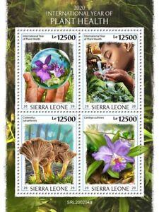Sierra Leone Plants Stamps 2020 MNH Year Plant Health Flowers Mushrooms 4v M/S