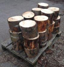 Firewood Logs For Sale - Just £1.25 Per Log