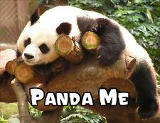Panda Me Fridge Magnet - Wildlife