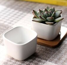 White Ceramic Planter Flower Pot Plant Square Garden Patio Desk Decor Outdoor
