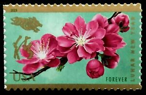 US CHINESE 2019 SCOTT #5340 LUNAR NEW YEAR OF THE BOAR MXF SINGLE FOREVER STAMP