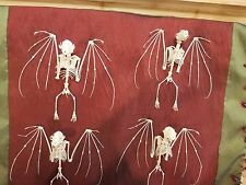 *Taxidermy Bat Skeleton- Sm Cynopterus Sphinx spread wings & feet! witch/voodoo