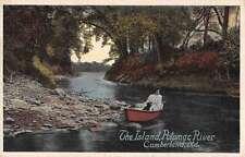 Cumberland Maryland Potomac River The Island Antique Postcard J63787