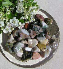 12 Stunning Ocean (Orbicular) Jasper Crystal Tumblestones